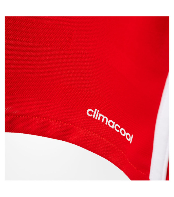 BENFICA--HOME-JERSEY.SIDE
